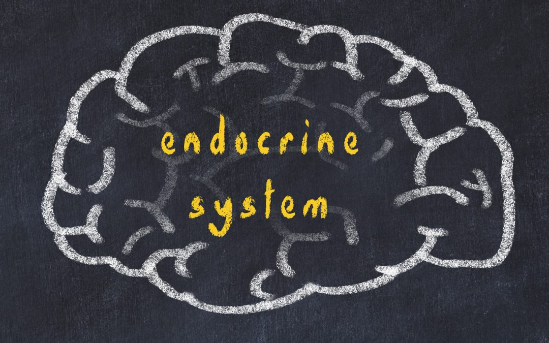 Massage and Moods: Massage Effects on the Endocrine System